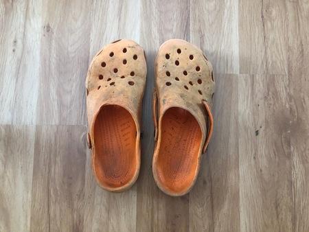 croc closeup